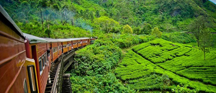 Шри-Ланка предлагает туристам бесплатные визы сроком на 1 месяц ... | 390x900